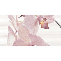 AMALIA ORCHID 25X50 DECOR 2